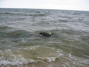 Photo: ... i wzdłuż brzegu. Z morza wyłaniały się skały.