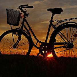 by Vlado Vinetić - Transportation Bicycles