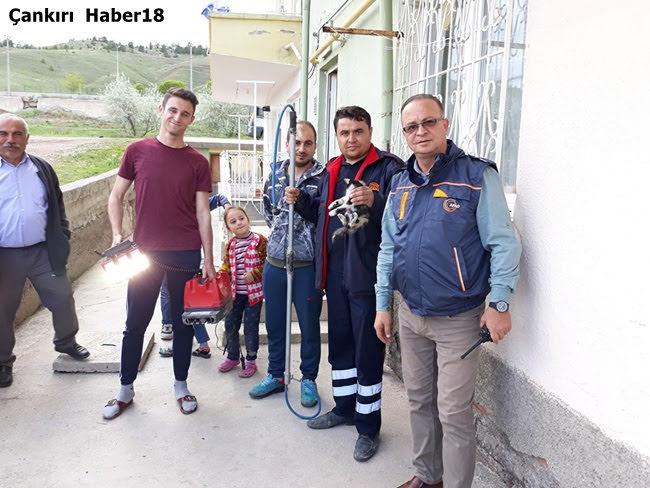 Çankırı AFAD,Çankırı Belediyesi,Çankırı Belediye İtfaiyesi,Yavru Kedi Çankırı,