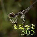 365 圣经金句 icon
