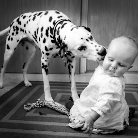 Kiss to you human puppy! by Mats Andersson - Black & White Portraits & People ( child, kiss, dalmatian, welcome, dog, reunion,  )