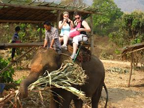 Photo: Rachel & Catherine on a larger elephant