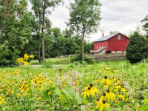 Photo: Flowers in front of a barn at Carriage Hill Metropark in Dayton, Ohio.