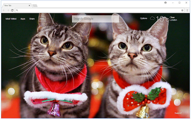 Christmas Hd Wallpaper Puppies Kitten Themes Free Addons