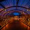 Dos Lagos Tunnel (1).jpg