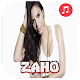 ZAHO SANS NET icon