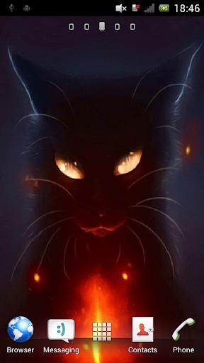 Cat with burning eyes Live WP