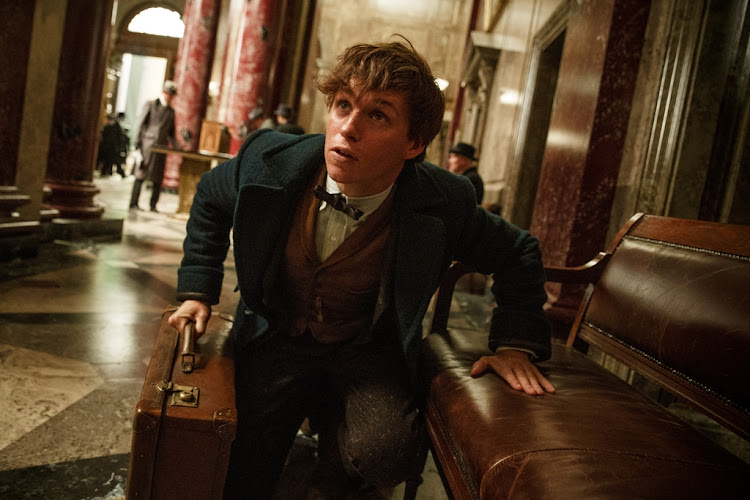 Actor Eddie Redmayne will reprise his role as Newt Scamander in the sequel to 'Fantastic Beasts and Where To Find Them'.