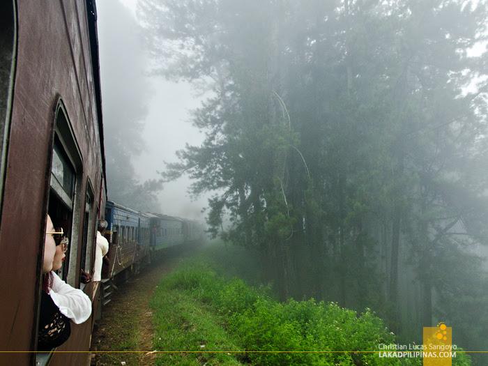 Ella to Colombo Train Fog