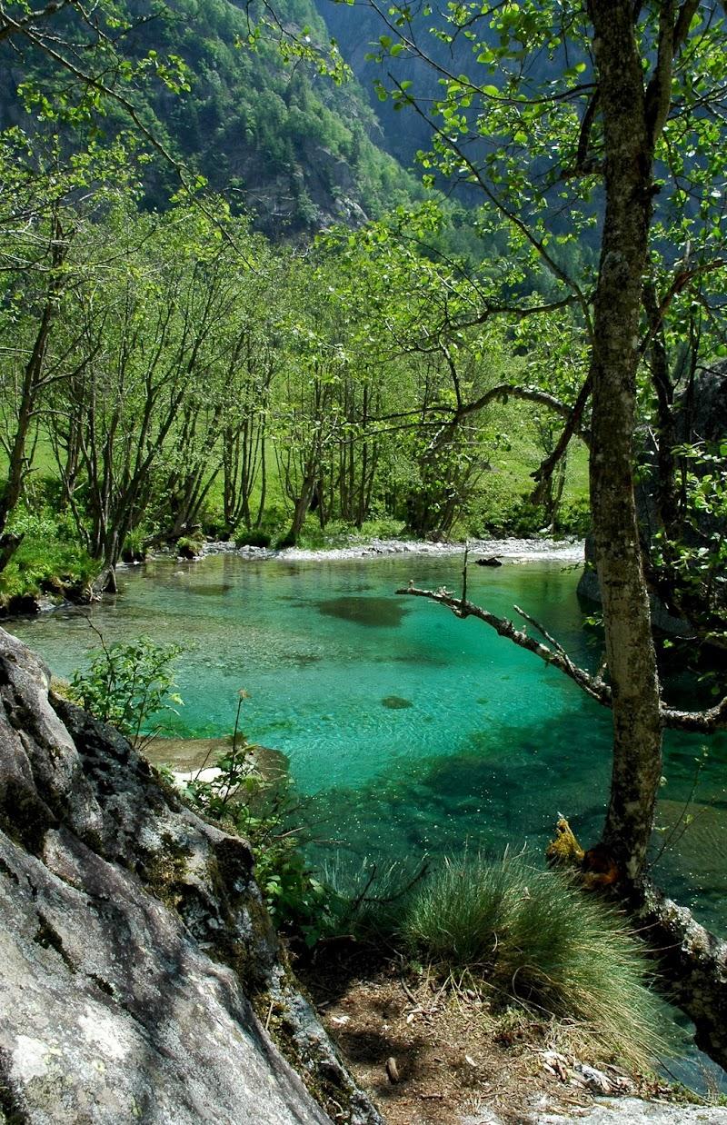 Sfumature di verde in Val di Mello di benny48