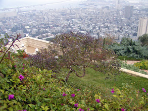 Photo: Once in their life, Baha'i followers are expected to make a pilgrimage here to climb the 1,400 steps of the Gardens.