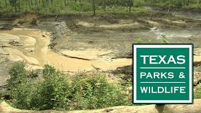 Texas Parks and Wildlife thumbnail