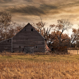 Alone by Tammy Hatfield - Buildings & Architecture Decaying & Abandoned ( sunset, old building, barns, fields, colorful )