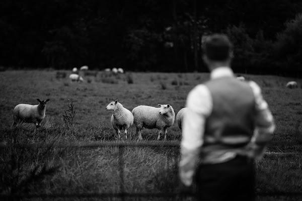 Wedding photographer Steve Grogan (SteveGrogan). Photo of 28.08.2017