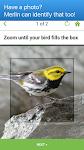 screenshot of Merlin Bird ID by Cornell Lab of Ornithology