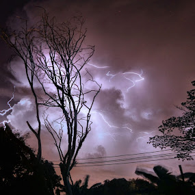 The thunder tree~ by Kay Eimza - Landscapes Weather