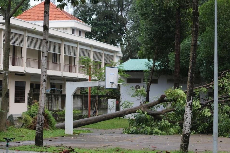 Phép lạ: Tượng Đức Mẹ Học viện Dòng Tên vẫn đứng vững trong cơn gió lốc - Ảnh minh hoạ 2