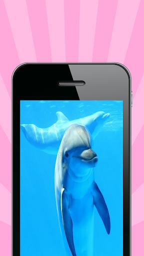 Тебе принадлежу дельфин скачать.