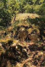 Photo: A csúcs felé haladva azonban már a Pötscheni Mészkő Formáció alsó rétegei tűnnek elő (mindkét formáció egy mélyebb medencében rakódott le)