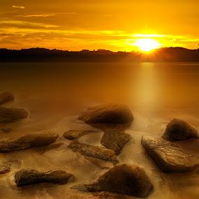 by Mohamad Sa'at Haji Mokim - Nature Up Close Rock & Stone