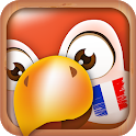 Learn French Phrases   French Translator icon