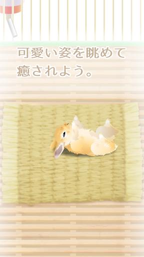 免費下載休閒APP|癒しのウサギ育成ゲーム app開箱文|APP開箱王