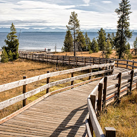 Boardwalk to the Lake by Richard Michael Lingo - Buildings & Architecture Bridges & Suspended Structures ( boardwalks, buildings, wyoming, yellowstone, architecture )