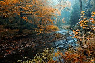 """Photo: Autumn 2008, Polenztal, national park """"Saxony Switzerland"""""""