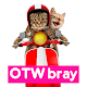 Meme Kucing Lucu Stiker WA for PC-Windows 7,8,10 and Mac