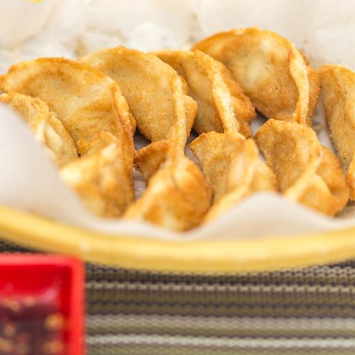 Pan-Fried Chicken Dumplings