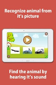 Kids Zoo,Animal Sounds & Photo Screenshot 7