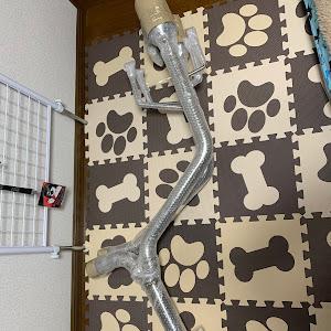 クラウンアスリート GRS184 3.5L 60thスペシャルエディションのカスタム事例画像 零さんの2019年12月05日19:54の投稿