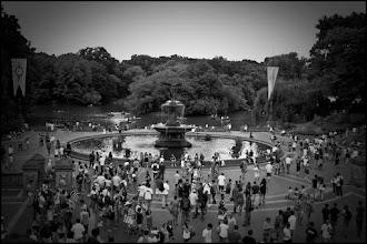 Photo: www.leannestaples.com  Central Park, NYC
