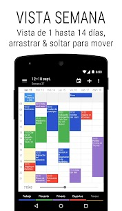 Calendario Business 2 Pro 2
