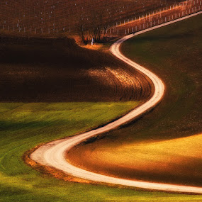 Curvy road by Jozef Micic - Landscapes Prairies, Meadows & Fields