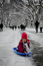 Photo: Central Park Sled- Elena Solomon. Life Between Pixels. Check out prints at:http://smu.gs/Y6mufQ