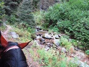 Photo: Long Fork of Silver Creek