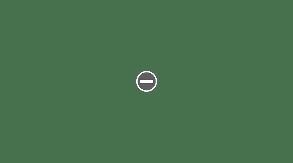Contenido de BRIO® 33500  Tren Especial Edición Argento