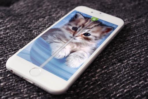かわいい子猫ジッパーロック
