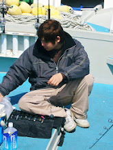 Photo: 「ちょっと! 俺もヒットしたけど切られたんやけど!」 PEラインにコブができていたらしく、そこからプチン! 近藤キャプテンより・・ヘタクソ! タコスケ!
