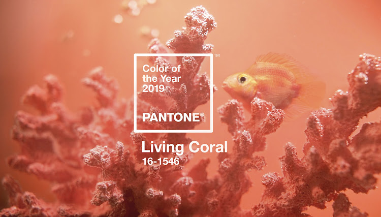Pantone Colour of the Year, Living Coral.