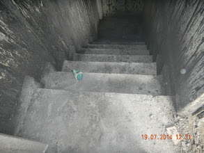 Photo: Basement Stais and wall - polishing and painting will have to be done - D-41, P-3, GNOIDA. Builder : Nanak Builders, Mr. Virender Batra