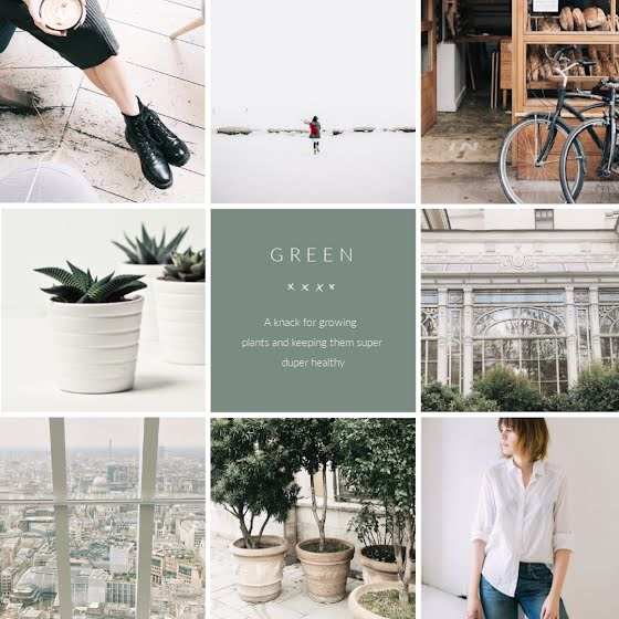 Growing Plants - Instagram Post Template