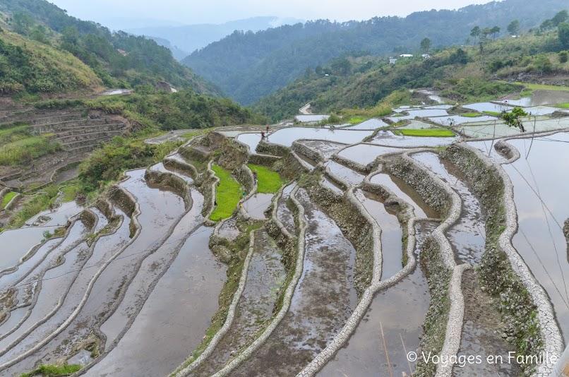 Maligcong, balade rizières