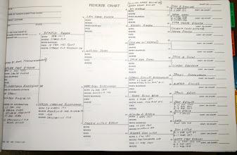 Photo: Helen Faye Rhoden Family Chart