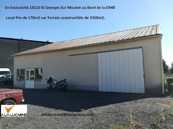 locaux professionels à Saint-Georges-sur-Moulon (18)