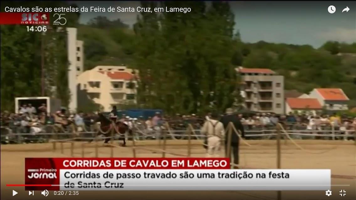 Vídeo - Cavalos são as estrelas da Feira de Santa Cruz, em Lamego