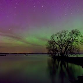Resting under northern lights by Joachim Persson - Landscapes Starscapes ( water, northernlights, stars, colors, green, aurora, pink, longexposure )