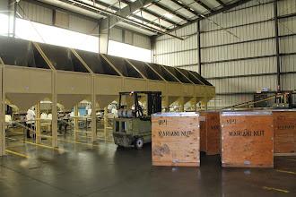 Photo: Mariani Nut Company, Winters CA