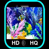 Aquarium Live Wallpapers HD